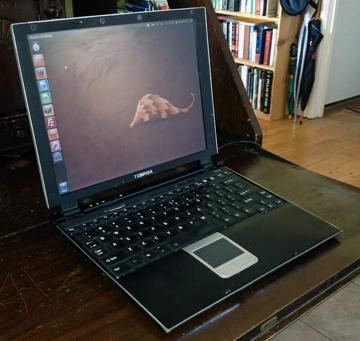 Toshiba r100 running Ubuntu 12.04
